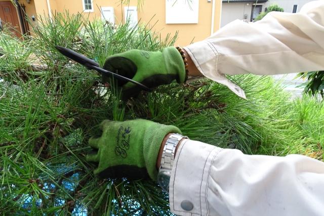 庭のお手入れ・除草対策・樹木伐採・田畑耕運他
